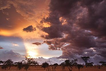 Clouds approach the savannah at the beginning of the rainy season, Tsavo, Kenya, East Africa, Africa
