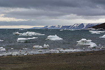 Edgeoya island, Svalbard islands, Arctic, Norway, Europe