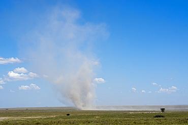 Dust devil, Ndutu, Serengeti, UNESCO World Heritage Site, Tanzania, East Africa, Africa