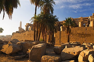 Temple of Amun at Karnak, Thebes, UNESCO World Heritage Site, Egypt, North Africa, Africa