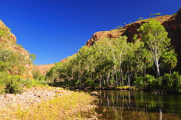 Moonshine Gorge and Pentecost River, Kimberley, Western Australia, Australia, Pacific