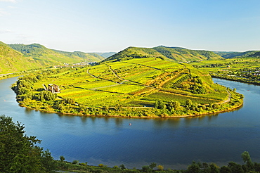 View of Calmont vineyards, Stuben Augustinian Convent, Bremm village and Moselle River (Mosel), Rhineland-Palatinate, Germany, Europe