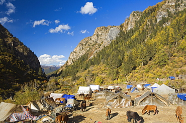 Tent camp, Yading Nature Reserve, Sichuan Province, China, Asia