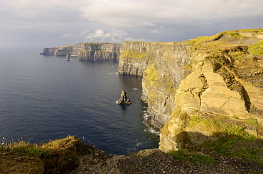 Cliffs of Moher, County Clare, Munster, Republic of Ireland (Eire), Europe