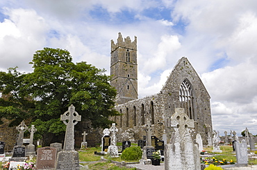 Claregalway Franciscan Friary, near Galway, County Galway, Connacht, Republic of Ireland, Europe