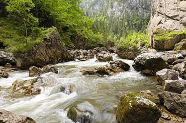 Bicaz River, Moldavia, Romania, Europe
