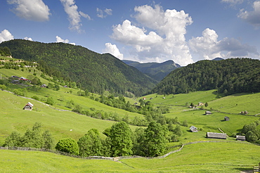 Alpine scenery, near Fundata and Bran, Transylvania, Romania, Europe