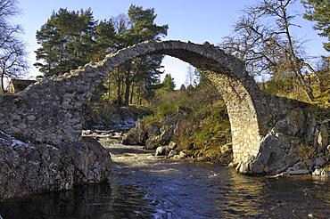 Old Packhorse Bridge, Carrbridge, Highlands, Scotland, United Kingdom, Europe