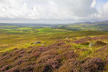 Fleet Valley from Castramont Hill, Dumfries and Galloway, Scotland, United Kingdom, Europe
