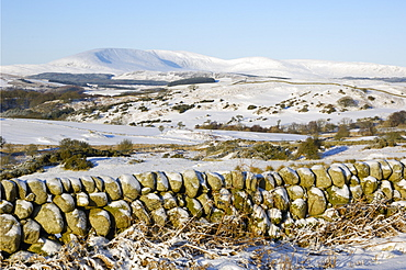 Cairnsmore of Fleet in winter snow, from Knocktinkle Viewpoint, Dumfries and Galloway, Scotland, United Kingdom, Europe
