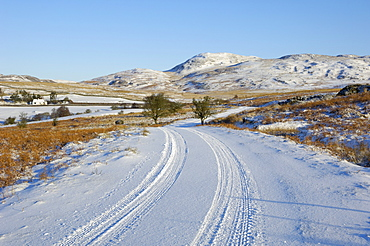 Road in winter snow, Dumfries and Galloway, Scotland, United Kingdom, Europe
