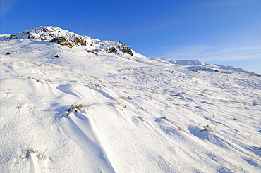 Buchan Hill in winter snow, Galloway Hills, Dumfries and Galloway, Scotland, United Kingdom, Europe