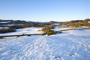 Fleet Valley National Scenic Area in winter snow, Dumfries and Galloway, Scotland, United Kingdom, Europe