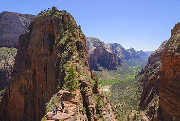 Trail to Angels Landing, Zion National Park, Utah, United States of America, North America
