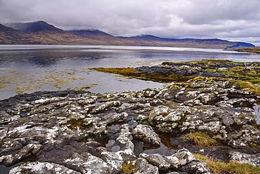 Loch na Keal, near Kellan, Isle of Mull, Inner Hebrides, Argyll and Bute, Scotland, United Kingdom, Europe