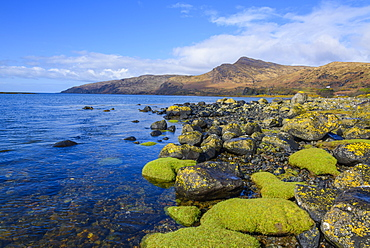 Loch Buie, Isle of Mull, Inner Hebrides, Argyll and Bute, Scotland, United Kingdom, Europe