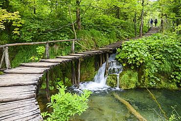 Boardwalk, Plitvice Lakes National Park, UNESCO World Heritage Site, Croatia, Europe