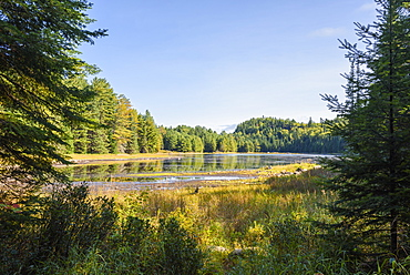 River and Highland Backpacking Trail in Algonquin Provincial Park, Ontario, Canada, North America