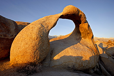 Mobius Arch framing Mt. Whitney at dawn, Alabama Hills, Inyo National Forest, California, United States of America, North America