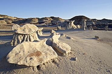 Hoodoos, Bisti Wilderness, New Mexico, United States of America, North America