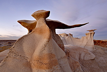 The Wings at dusk, Bisti Wilderness, New Mexico, United States of America, North America