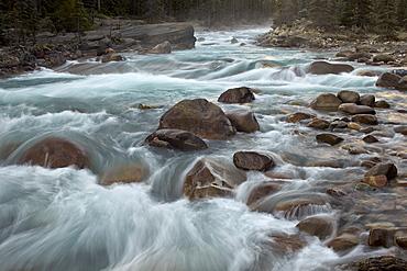 Cascades on the Mistaya River, Banff National Park, UNESCO World Heritage Site, Alberta, Canada, North America