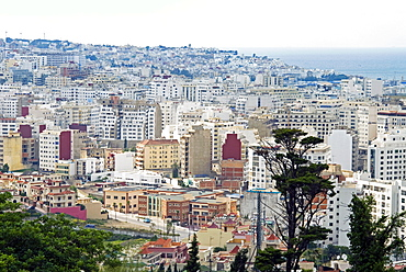 View of Tangier from Charf Hill, Tangier, Morocco, North Africa, Africa