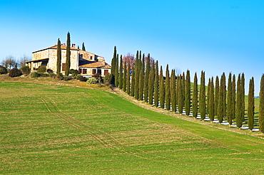 Val d'Orcia, Siena Province, Siena, Tuscany, Italy, Europe
