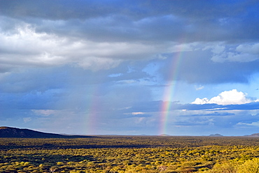 Rainbows, Ongava Game Reserve, Namibia, Africa