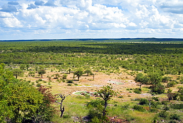 Ongava Game Reserve, Namibia, Africa