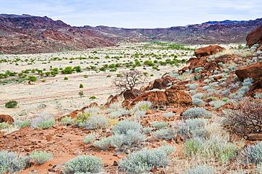 Twyfelfontein, UNESCO World Heritage Site, Damaraland, Kunene Region, Namibia, Africa