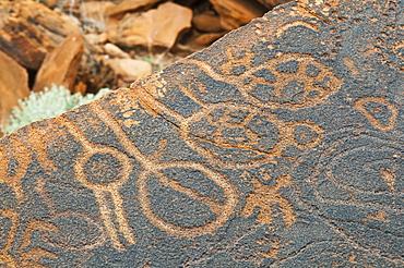 Petroglyphs or rock engravings, Twyfelfontein, UNESCO World Heritage Site, Damaraland, Kunene Region, Namibia, Africa
