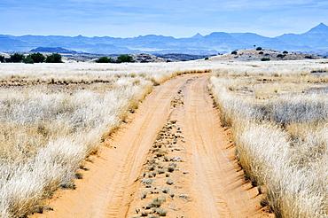 Damaraland, Kunene Region, Namibia, Africa