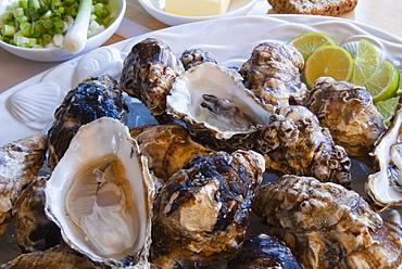 Oysters, Kilkenny, County Kilkenny, Leinster, Republic of Ireland (Eire), Europe
