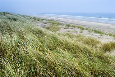 Curracloe beach, County Wexford, Leinster, Republic of Ireland (Eire), Europe