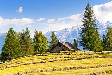 Grivola Mountain, Vetan, Aosta Valley, Italian Alps, Italy, Europe