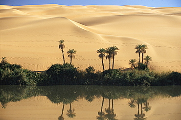 Oum el Ma (Umm el Ma) Lake, Mandara Valley, Southwest desert, Libya, North Africa, Africa