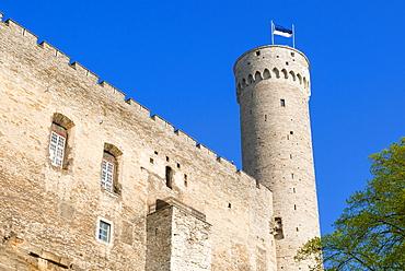 The Pikk Hermann Tower, part of the Toompea Castle,  UNESCO World Heritage Site,Tallinn, Estonia, Baltic States, Europe
