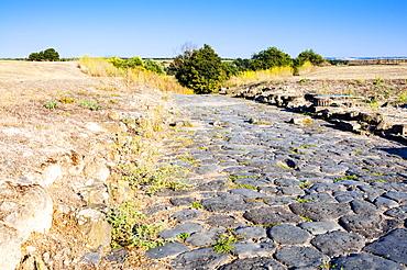 Decumanus maximus, Roman road, Naturalistic Archaeological Park of Vulci, Etruscan city, Vulci, Province of Viterbo, Latium, Lazio, Italy, Europe