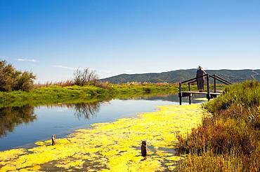 Orbetello Lagoon, Orbetello, Province of Grosseto, Maremma, Tuscany, Italy, Europe