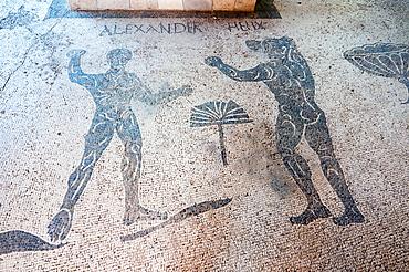 Mosaics, Caupona di Alexander e Helix, Ostia Antica archaeological site, Ostia, Rome province, Lazio, Italy, Europe