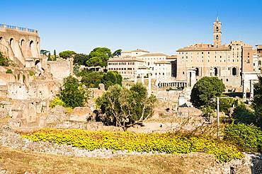 Roman Forum, Palatine Hill on the right, UNESCO World Heritage Site, Rome, Lazio, Italy, Europe