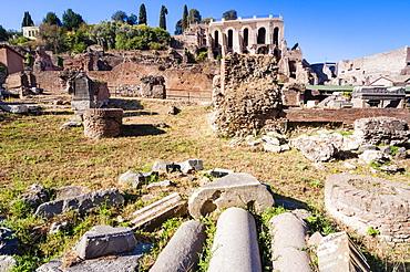 Columns at Roman Forum, UNESCO World Heritage Site, Rome, Lazio, Italy, Europe