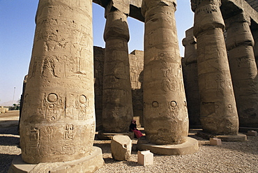 Colonnade of Amenophis III (Amenhotep III), Luxor Temple, Thebes, UNESCO World Heritage Site, Egypt, North Africa, Africa