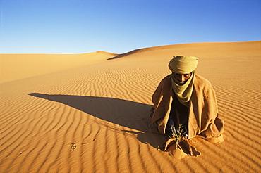 Akakus area, Southwest desert, Libya, North Africa, Africa