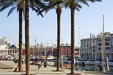 Waterfront, Porto Antico (Ancient Port), Genova, Liguria, Italy, Europe