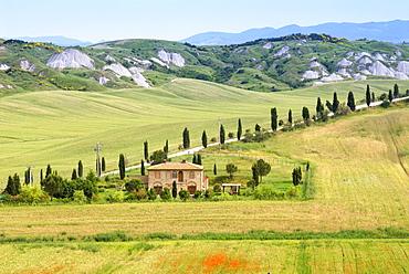 Crete Senesi area, near Asciano, Siena Province, Tuscany, Italy, Europe