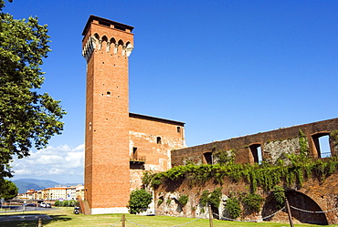 The Tower of the Citadel, Pisa, Tuscany, Italy, Europe