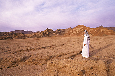 The Sinai desert, Egypt, North Africa, Africa