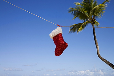 Christmas sock, Las Terrenas, Samana Peninsula, Dominican Republic, West Indies, Caribbean, Central America